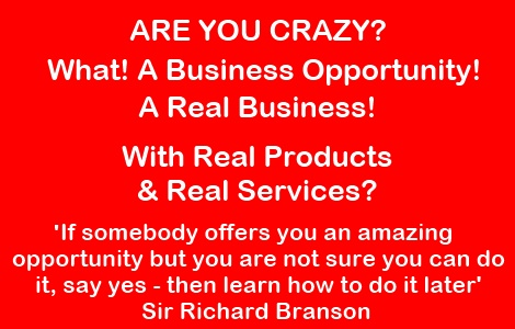 Banner Are You Crazy +Richard Branson